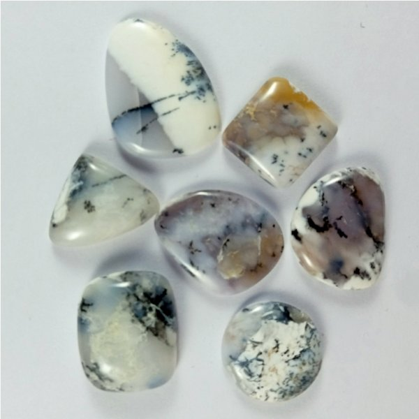 205Cts. 7Pcs Natural Dendrite Opal Cabochon loose Gemstone Wholesale Lot