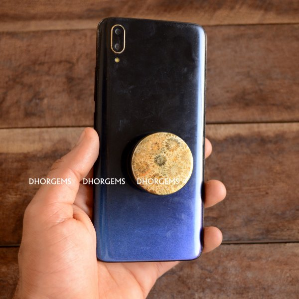 Fossil Coral Pop Socket