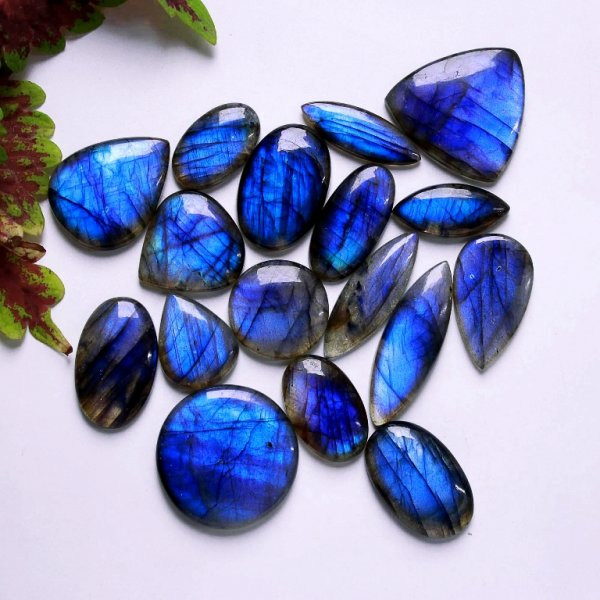 478Cts. 17Pcs. Natural Blue Labradorite Wholesale Lot Mix Cabochon Gemstone 34X34 25X15