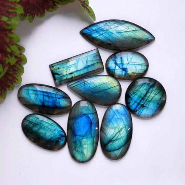 371Cts. 9Pcs. Natural Blue Labradorite Wholesale Lot Mix Cabochon Gemstone 56X23 32x21