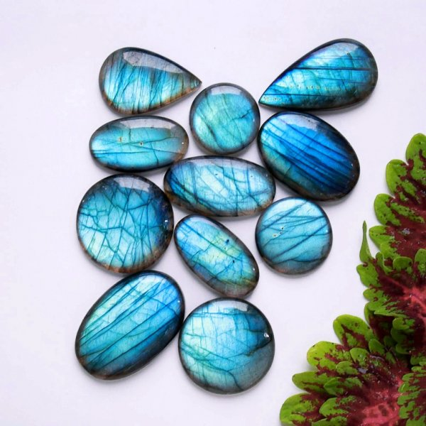 436Cts. 11Pcs. Natural Blue Labradorite Wholesale Lot Mix Cabochon Gemstone 41X26 23X23