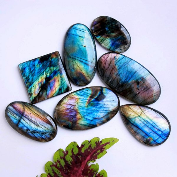 381Cts. 7Pcs. Natural Purple Labradorite Wholesale Lot Mix Cabochon Loose Gemstone 47x30 33x21