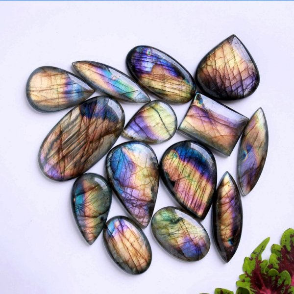 547Cts. 14Pcs. Natural Purple Labradorite Wholesale Lot Mix Cabochon Loose Gemstone 50x27 28x21
