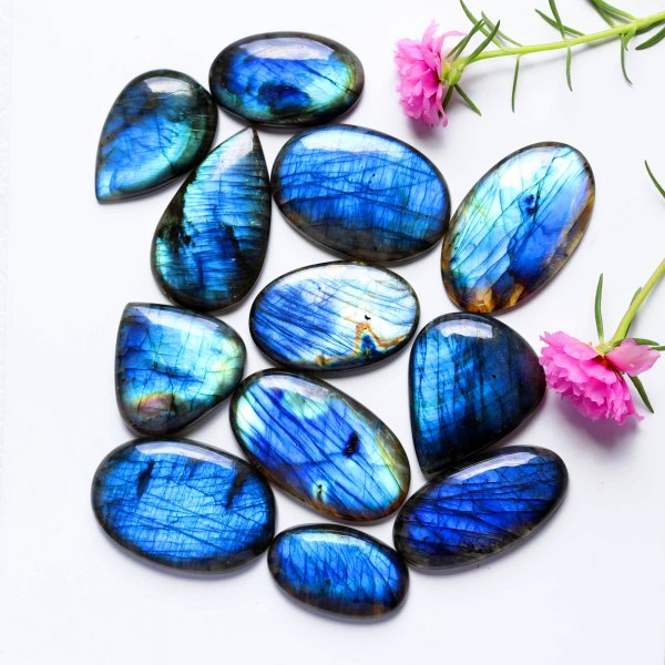 12 Pcs. Lot Natural Labradorite Blue Fire Mix Shape Cabochon Loose Gemstone 1319Cts 62-39mm
